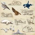 Polar Regions: Travel around the World. Freehand drawings. — Stock Photo #58619611