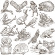 Animals around the world (set no.9) - Hand drawn illustrations — Stock Photo #59323971