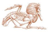 Legendary animals and monsters: SPHINX — Stock Photo