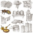 Bees, beekeeping and honey - hand drawn illustrations — Stock Photo #66847275