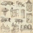 Bees, beekeeping and honey - hand drawn illustrations — Stock Photo #66847321