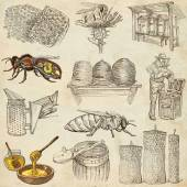 Bees, beekeeping and honey - hand drawn illustrations — Stock Photo