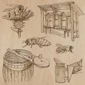 Bees, beekeeping and honey - hand drawn vector pack 7 — Stock Vector