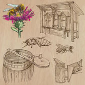 Bees, beekeeping and honey - hand drawn vector pack 6 — Stock Vector