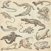 Lizards - An hand drawn pack, freehands — Stock Photo
