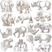 Heavy animals. Hand drawn pack on white. Freehands. — Stock Photo