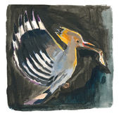 An hand painted illustration on white - Bird, Hoopoe — Stock Photo