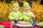 Happy little kids twin brothers on walk — Stock Photo