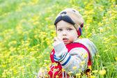Cute toddler boy plucks flowers — Stock Photo