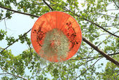 Colorful umbrella hanging on the tree in garden — Stock Photo