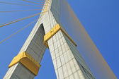 The Rama VIII Cable Bridge,Bangkok,Thailand — Stock Photo