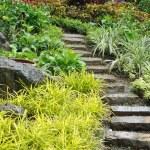 Natural stone stairs — Stock Photo #57356853
