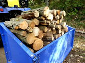 Logs for the fire — Stock Photo