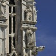 Trip to Siena and Pisa in Italy — Stock Photo #67075297