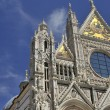 Trip to Siena and Pisa in Italy — Stock Photo #67075517