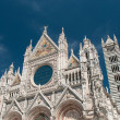 Trip to Siena and Pisa in Italy — Stock Photo #67173553