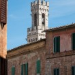 Trip to Siena and Pisa in Italy — Stock Photo #67173649
