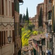 Trip to Siena and Pisa in Italy — Stock Photo #67173969
