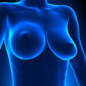 Uneven Breasts - different sizes — Stock Photo