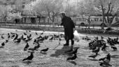 Senior woman and pigeons — Stock Photo