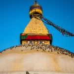The Great stupa — Stock Photo #73557527