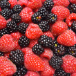 Red ripe berry and fresh blackberry — Stock Photo #79407236
