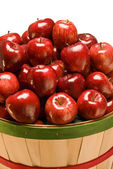Bushel Basket of Fresh Red Apples — Stock Photo