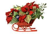 Decorative Christmas Sleigh Display — Stok fotoğraf