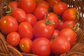 Juicy Cherry Tomatoes In Basket Close Up — Foto Stock