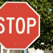 Постер, плакат: Big Bold Red STOP Sign