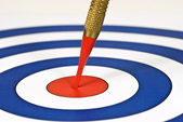Successful And Right On Target — Stock Photo