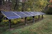 Solar Energy Panels Among Trees — Stock Photo