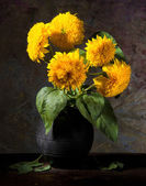 Still life with beautiful sunflowers in vase — Stock Photo