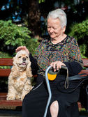 Old woman sitting on a bench with cocker spaniel — Stock Photo