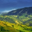 Beautiful summer landscape in Carpathian mountains — Stock Photo #53586309