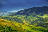 Beautiful summer landscape in Carpathian mountains — Stock Photo