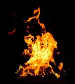 Orange eld lågor — Stockfoto