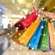 Female holding shopping bags — Stock Photo #57900541