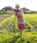 Farmer hoeing vegetable garden — Stock Photo