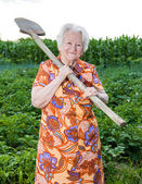 Old woman with a shovel — Stock fotografie