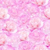 Pink roses seamless pattern — Stock Photo