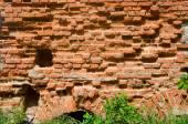 Old crumbling brick wall — Stock Photo