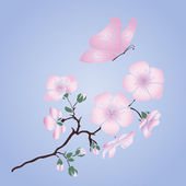 Twig cherry blossoms  — Stockvector