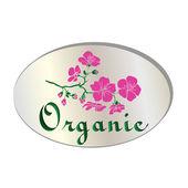 Natural  organic flower icon vector — 图库矢量图片