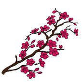 Twig cherry blossoms  — Stock Vector