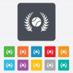 Tennis ball sign icon. Sport symbol. — Stock Vector #56495461