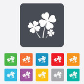 Clovers with four leaves sign. St Patrick symbol — Stock Vector