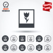 Macro photo frame icons — Stock Vector #63894613