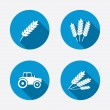 Agricultural sign icons. — Stock Vector #67315257