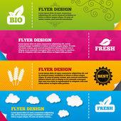 Flyer brochure designs. — Stock Vector